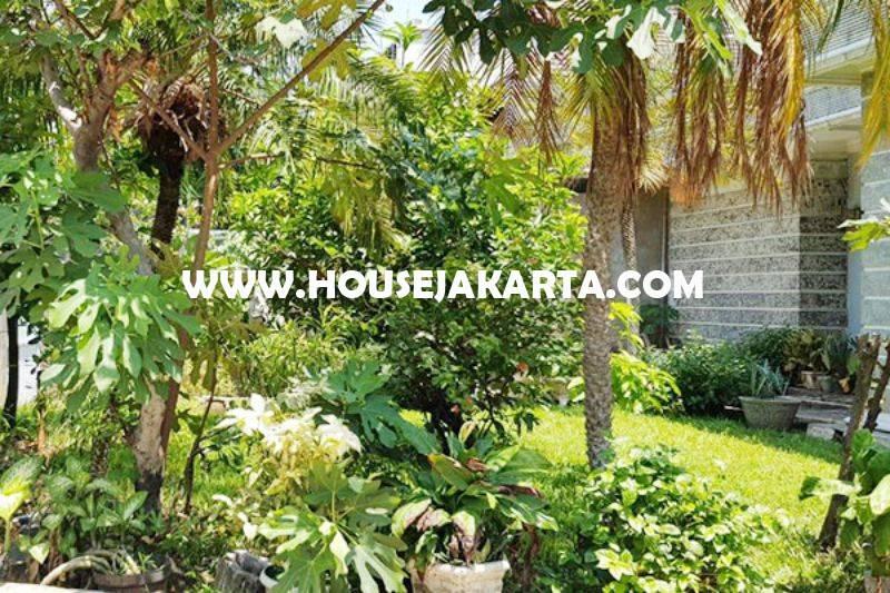 Rumah Jalan Garut Menteng Dijual Murah Tanah Kotak Golongan C