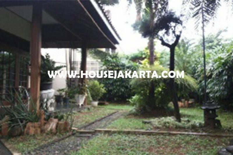 Rumah jalan Besuki Menteng Dijual Murah dekat Taman bentuk Kotak