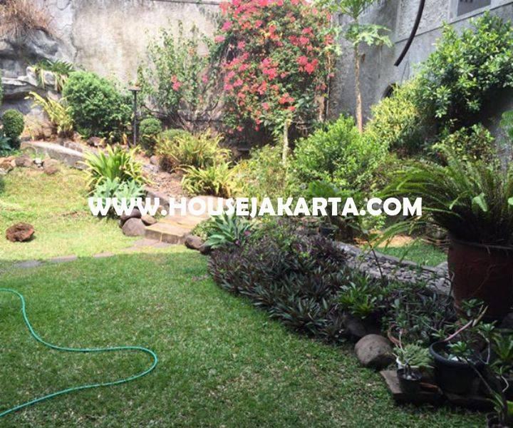 Rumah Jalan Besuki Menteng Dijual Murah hitung Tanah Kotak daerah asri