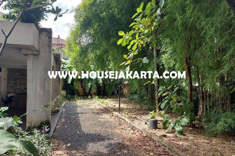 Rumah Tua Hitung Tanah Jalan Madiun Menteng Bentuk Persegi Dijual 60juta/m Murah