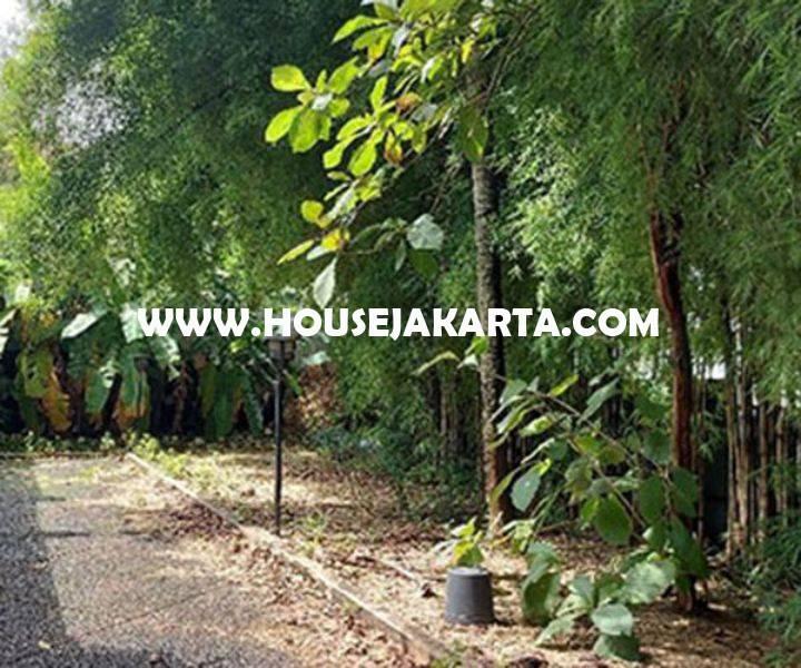 Rumah 2 lantai jalan Pasuruan Menteng Dijual Murah hitung tanah 66 juta/m ada Pool