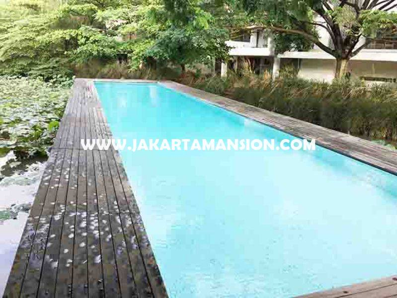 Compound House at Jatipadang For Rent Sewa Lease Wide Land and Green Area