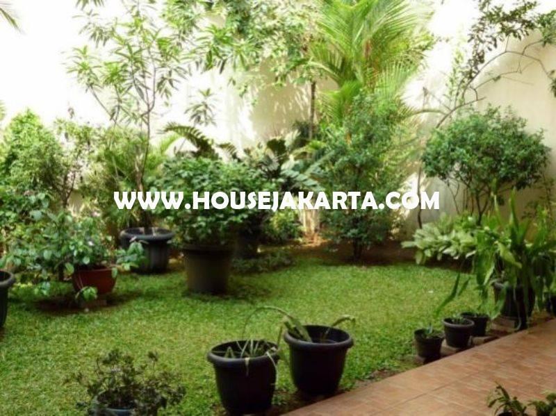 Rumah Jalan Maluku Menteng Dijual Murah Rp 48M Tanah Kotak